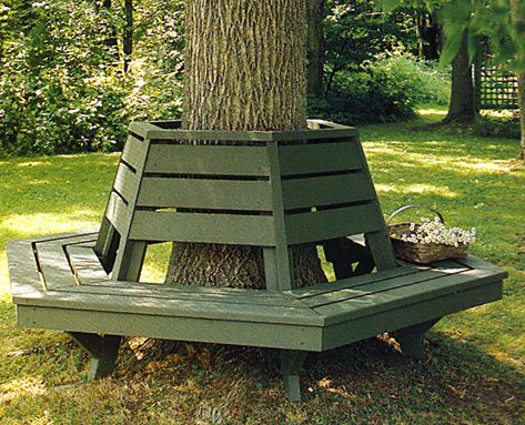 Bench around tree on pinterest tree bench bench around Circular tree bench