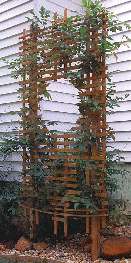 Landscaping With Trellis : Landscaping with garden trellis nice designs